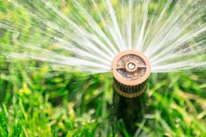 Sprinkler & Irrigation Systems